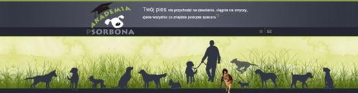 Szkolenie psów - Akademia Psorbona