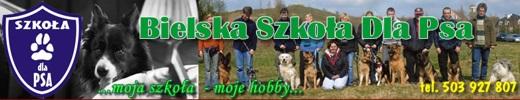 Szkolenie psów - Bielska Szkoła dla Psa
